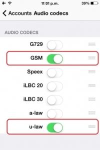 250px-ZiOs_basic_audCodec_2